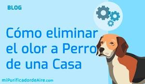 """Cómo quitar Humedades de las Paredes con un Deshumidificador con Purificador de Aire"""" class="""
